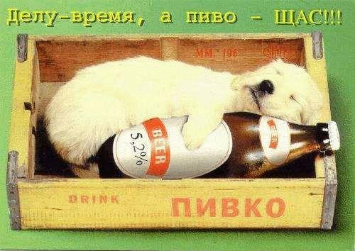 http://www.millenniumdogs.net/hum14.jpg